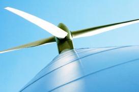 Der BWE fordert: Bundesregierung muss Klimaschutzpolitik endlich konkret machen